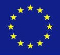 Call for EU expert on THB